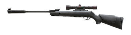 Gamo Whisper air rifle