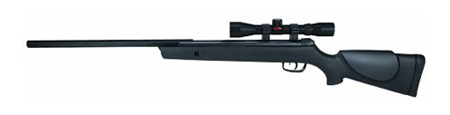 Gamo Big Cat 1250 Air Rifle with Scope