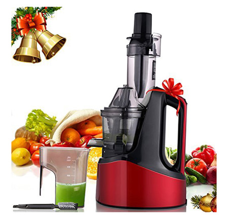 MeyKey Slow Masticating Juicer